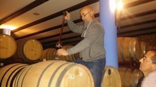 Catando vinos en barrica 1