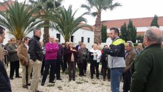 Llegada a Bodega Palacio Quemado